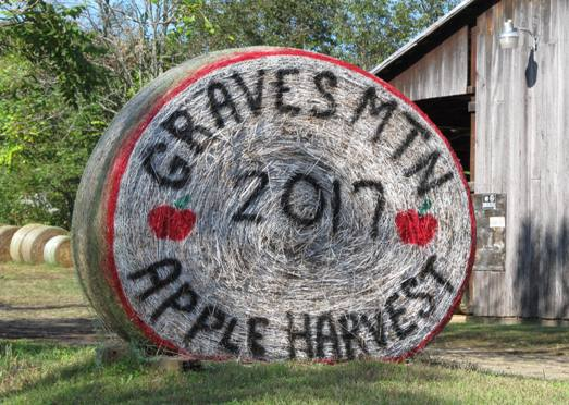 2017 Graves Mountain Apple Festival